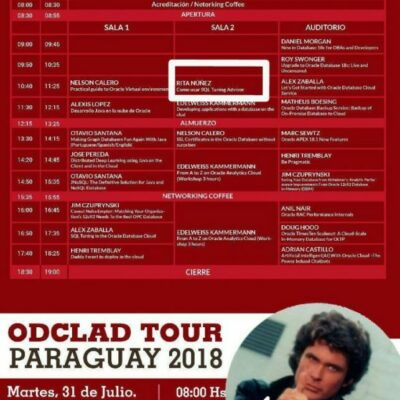 Solamente UNA mujer en esta serie de paneles. Oracle User Group Paraguay